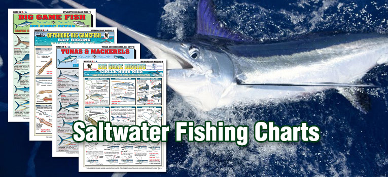 Saltwater Fishing Charts